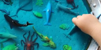 Pequeno oceano sensorial-capa