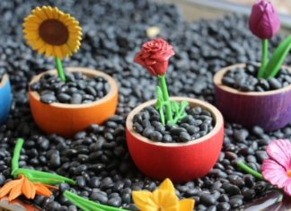 jardim de flores-capa