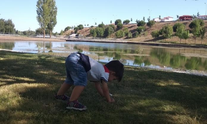 Criar filhos felizes, Deixe-os brincar ao ar livre4