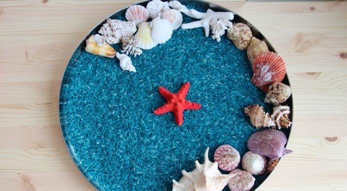 Oceano sensorial com arroz congelado-capa