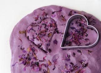 Plasticina caseira petalas secas flores