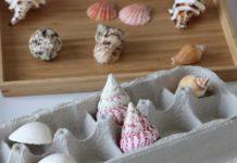 jogo pareamento conchas