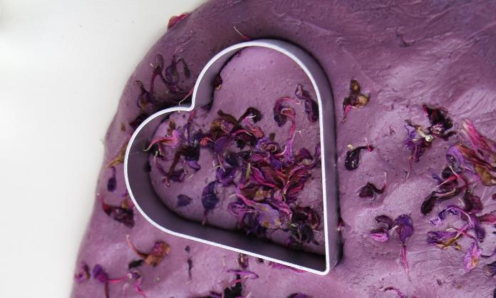 plasticina caseira petalas flores1