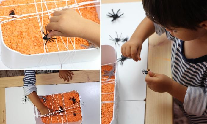 apanhar aranhas2