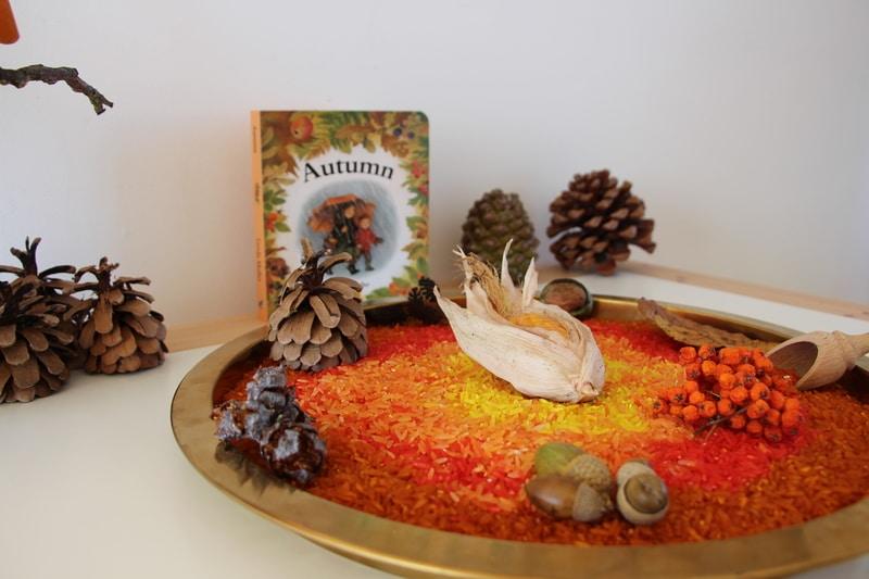 arroz sensorial outono1