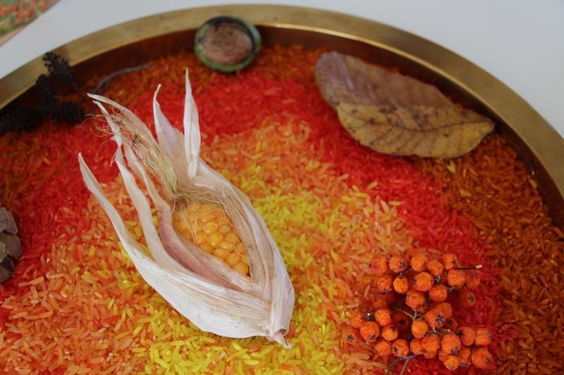 arroz sensorial outono2