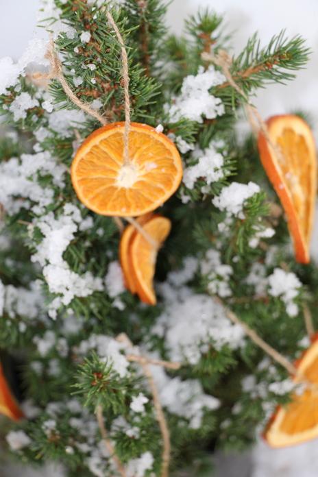 ormaneto com laranjas desidratadas2