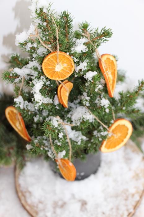 ormaneto com laranjas desidratadas6