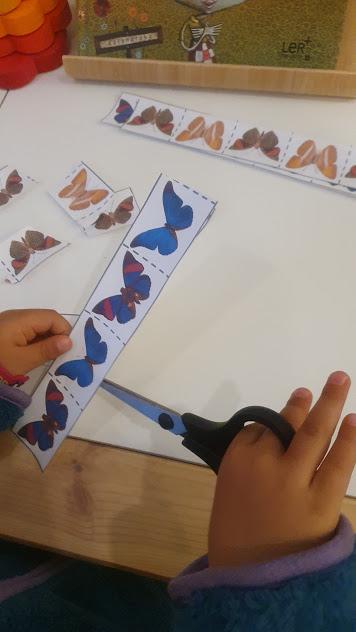 borboletas-cortar com tesoura1