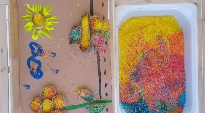 craft DYI arroz arco-iris